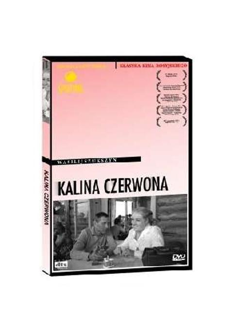 Kalina-czerwona